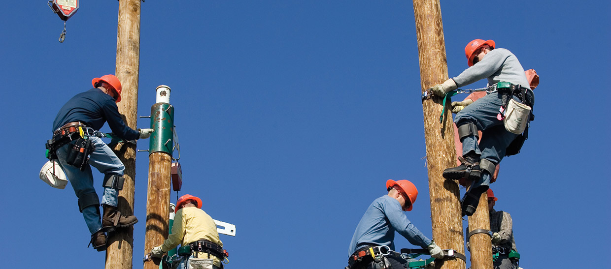 Students working on a power pole